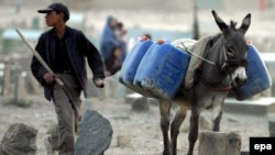 An Afghan boy guides his donkey as it carries water cans. Seventy percent of Afghans lack access to clean drinking water.