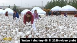 Кадр из репортажа государственного телевидения Туркменистана