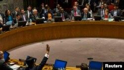 ԱՄՆ - Ռուսաստանը և Չինաստանը դեմ են քվեարկում ՄԱԿ-ի Անվտանգության խորհրդի բանաձևին, Նյու Յորք, 22-ը մայիսի, 2014թ․