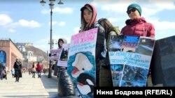Акция в защиту белух и косаток во Владивостоке