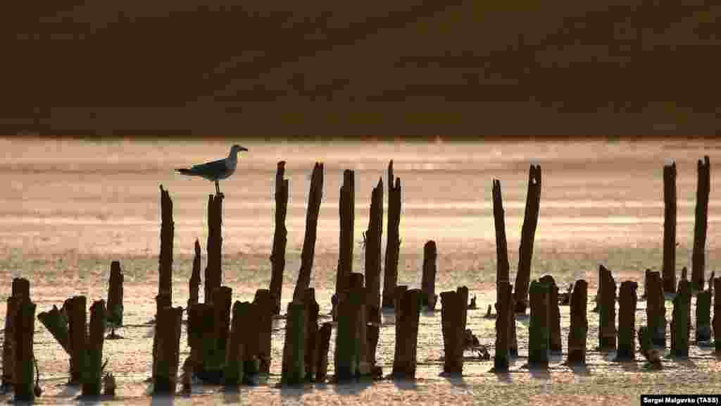 Чокракське озеро – це солона водойма на Керченському півострові в Криму, відділена від Азовського моря широким пересипом