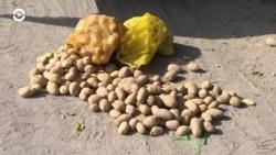 Азия: километровые заторы из фур на границе Казахстана и Узбекистана
