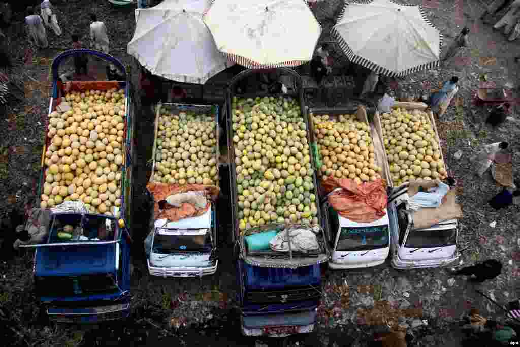 Fruit vendors sell their produce at a market in Karachi, Pakistan. (epa/Shahzaib Akber)