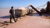 Работник проходит мимо фургона, загруженного розовой морской солью на озере Сасык-Сиваш, недалеко от Евпатории.