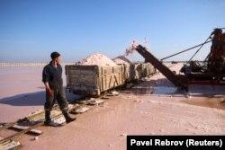 Работнік ідзе міма фургона, нагружанага ружовай марской сольлю з возера Сасык-Сіваш, недалёка ад Еўпаторыі