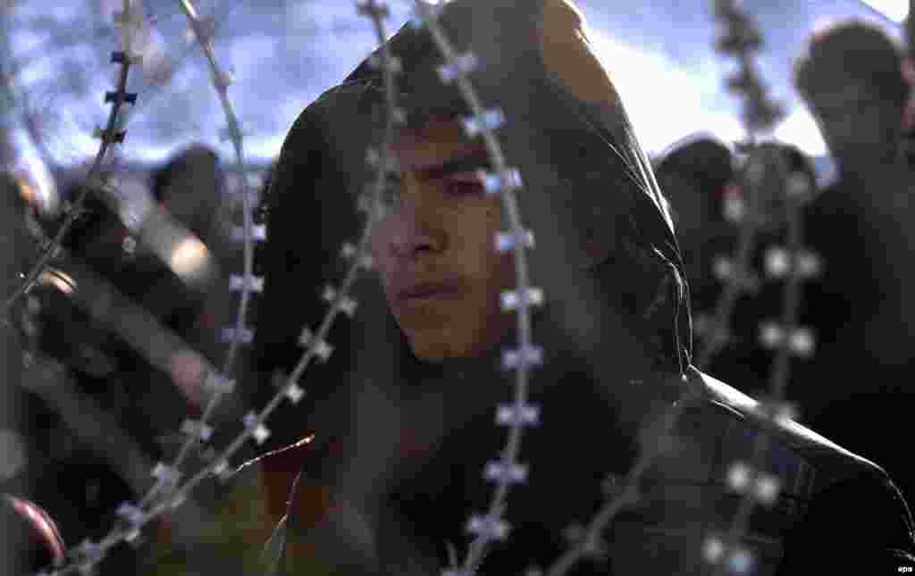 Afghan migrants stay behind a fence near the Greek-Macedonian border. (epa/Georgi Licovski)