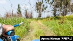 Дорога до Чеплярова