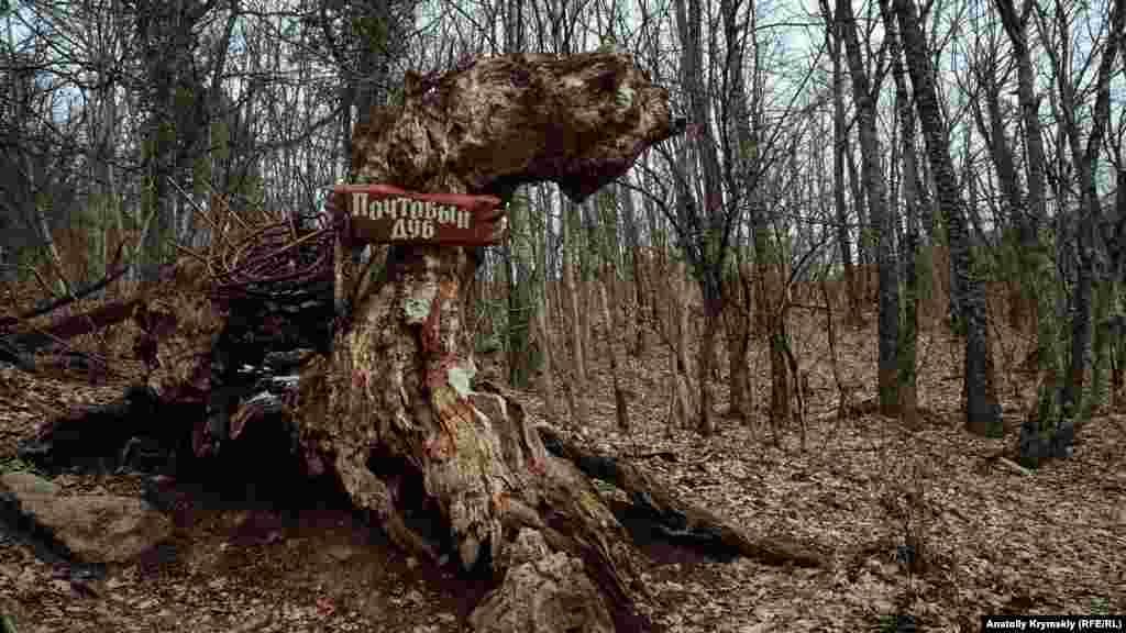Від 300-річного скельного «Поштового дуба» залишився тільки напівзгорілий стовбур. За однією з версій, у 1981 році в дерево влучила блискавка