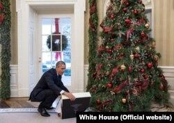 Барак Обама перед Рождеством в Овальном кабинете Белого Дома открывает подарок от госсекретаря Джона Керри. 19 декабря 2014 года