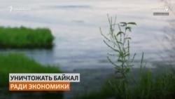 """На Байкале разрешили вырубить лес ради """"инфраструктурных проектов"""""""