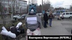 """Акция """"Стратегия-18"""", Иркутск, март 2016-го"""
