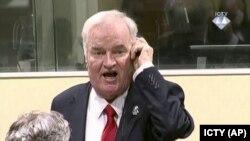 Ратко Младич, бывший командир боснийских сербов, в суде в Гааге. 22 ноября 2017 года.