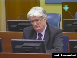 Radovan Karadžić na suđenju u Hagu, 28. veljače 2012.