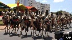 Кавалерия армии Мали: в условиях пустыни верблюды предпочтительнее коней