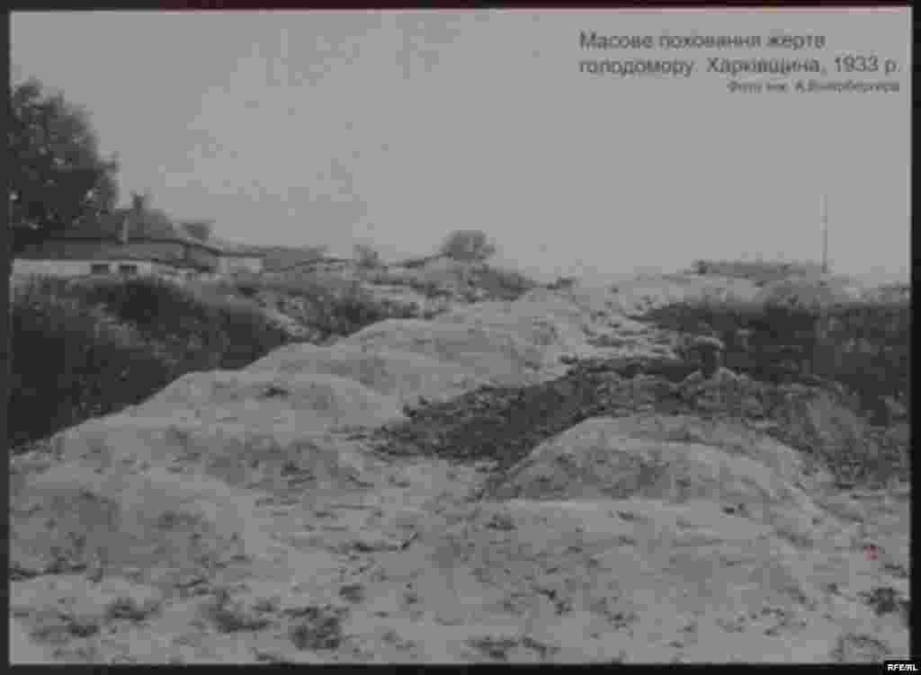 Массове поховання жертв Голодомору. Харківщина, 1933 р. Фото інж. А. Вінерберга - Голодомор, голод, 1933