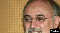 Ali Akbar Salehi previously headed Iran's Atomic Energy Organization.