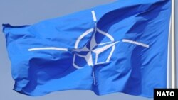 Сьцяг НАТО