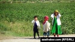 Pagta meýdany, Türkmenistanyň Lebap welaýaty