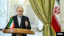 علیاکبر صالحی، وزیر امور خارجه ایران پیش از انتخابات ریاست جمهوری یازدهم گفته بود که مواضع هستهای تهران در صورت پیروزی هر کدام از نامزدها بدون تغییر خواهد ماند.