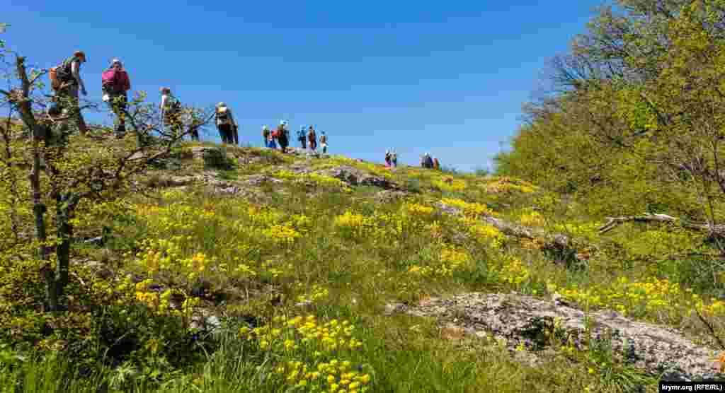 Туристы на маршруте.