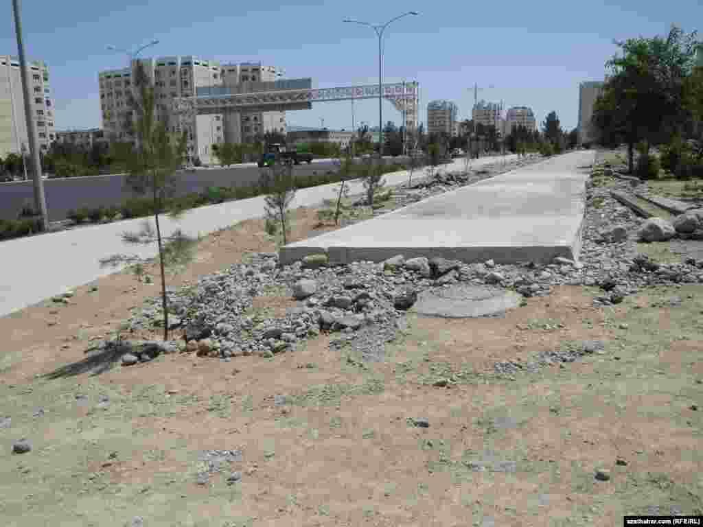 Новые насаждения. Власти Туркменистана сообщают о ежегодной высадке 3 миллионов саженцев в столице и других регионах страны.