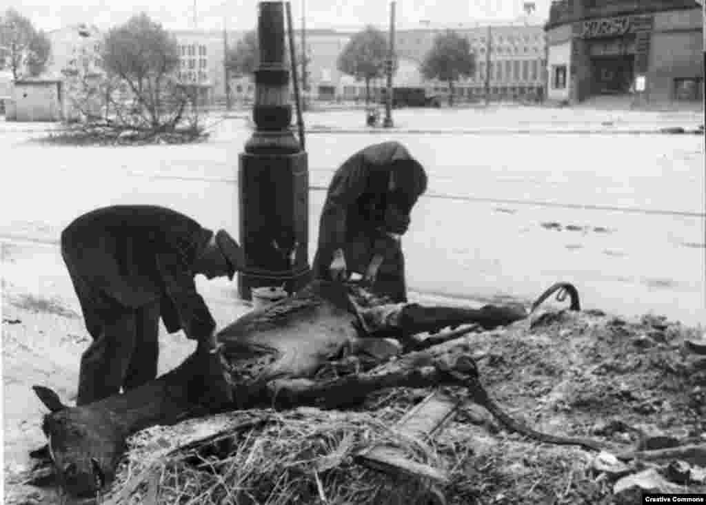 Berliners slicing meat from a dead horse in May 1945.