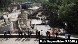 Защитники прав животных распространили в интернете электронную петицию с требованием отменить строительство зоопарка на территории Грузии, и ее уже подписали несколько тысяч человек