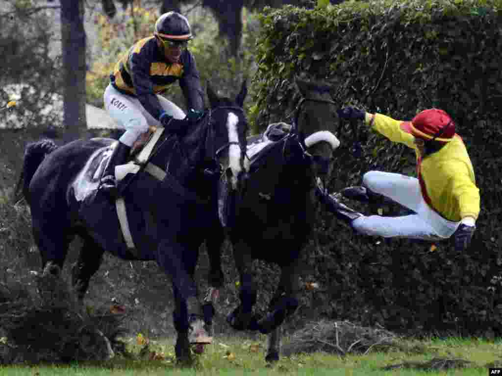 French jockey Julien Lemme falls from his horse during the Czech Grand National steeplechase in Pardubice on October 9. (Photo by Joe Klamar for AFP)