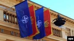 Zastava Crne Gore i NATO-a, 2015.