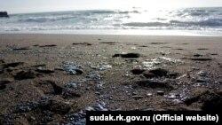 Последствия выброса мазута возле Судака