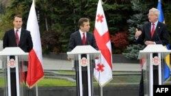 Европейские гости не стали комментировать мечты грузинского премьера, но то, что Иванишвили смог их удивить, стало понятно из слов министров иностранных дел Польши и Швеции