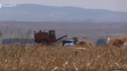 ՀՀ-ում մեկնարկել է գյուղատնտեսական ապահովագրության ծրագրի փորձարկումը
