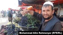 یک فروشنده انگور سیاه در جوزجان