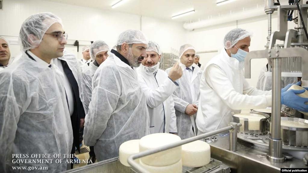 В Армении открылся оснащенный современными технологиями завод по производству сыра и других молочных продуктов