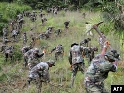 Уничтожение нелегальных посевов коки, Эквадор