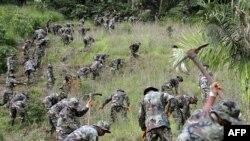 Солдаты уничтожают плантацию коки