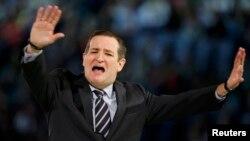 Сенатор от штата Техас Тед Круз одержал победу на внутрипартийных республиканских выборах в штате Айова, обойдя своего главного конкурента – миллиардера Дональда Трампа.