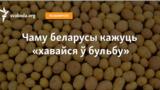 Belarus - banner bulba