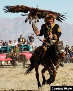 Моңғолияның Баян-Өлгий аймағында өткен саятшылар байқауы. 5 қазан, 2014 жыл. (Көрнекі сурет)