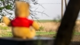 Ukraine -- Bear toy watching at fhe fild and village Piski at the Donetsk region, May2018