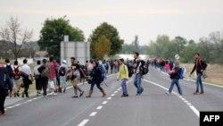 Мигранты на австрийско-венгерской границе, 14 сентября 2015 года.
