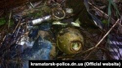 Одна из гранат, найденных на территории школы