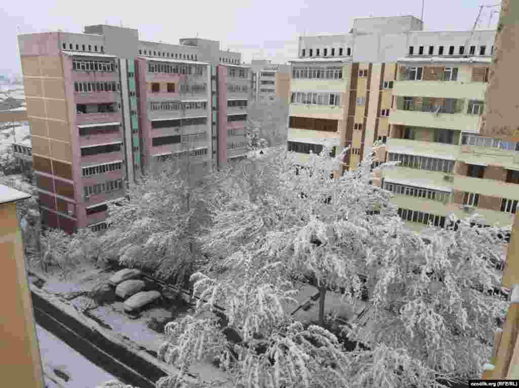 Самарканд шаары.