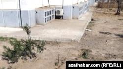 Parahat 7-niň baglary guraýar