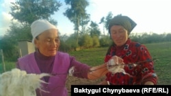 Kakesh Jumabai-Kyzy (left), a 70-year-old craftswoman living in Kyrygyzstan's remote At-Bashy region, collecting the dried wool she uses to make felt for traditional shyrdak and alakiyiz carpets.