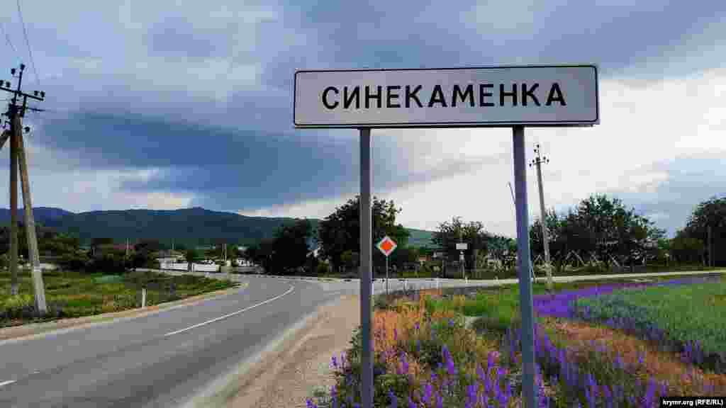 До 1948 года село Синекаменка носило крымскотатарский топоним Кокташ. Жили здесь в большинстве своем мусульмане– крымские татары, которыхкоторых насильственно депортировали в мае 1944 года. Позже советская власть переименовала село
