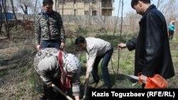 Манат Утеулиева и гражданские активисты сажают дерево. Поселок Тастыбулак Алматинской области, 5 апреля 2013 года.