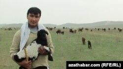 Türkmen çopany