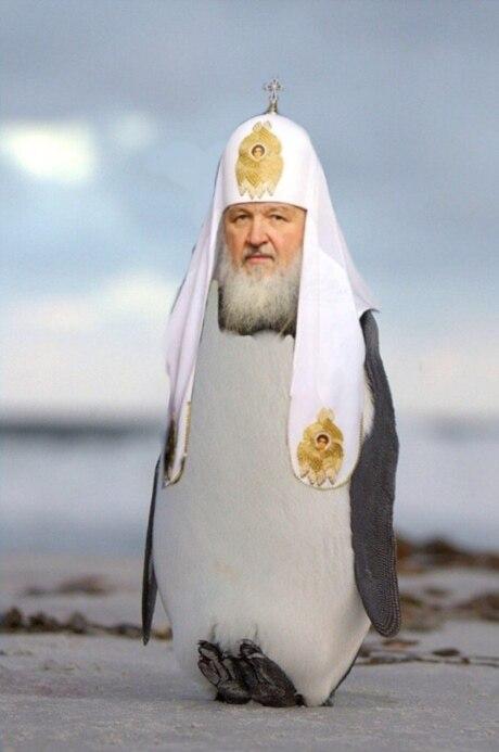 """Додон подтвердил перенос встречи с Рогозиным в Тегеран: """"Есть о чем поговорить"""" - Цензор.НЕТ 1857"""