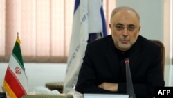 Head of Iran's nuclear program, Ali Akbar Salehi